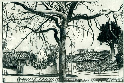 Depuis un Banc : Carcassonne # 1 par Julien Lauber